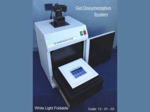 Gel Documentation Analysis